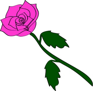 Pink Rose clipart #3