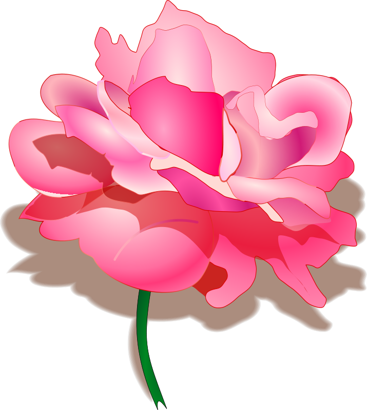Pink Rose clipart flowery Roses View Clipart Pictures Clipart