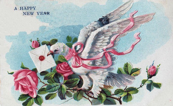 Pink Rose clipart happy new year New Fairy with Year Dove