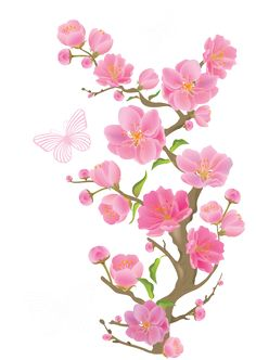 Pink Rose clipart pink black butterfly Photos  ClipArt Pink Flower