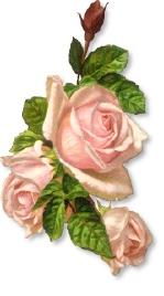 Pink Rose clipart public domain Art Clipart Domain Rose images
