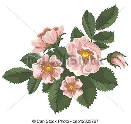 Pink Rose clipart flower bouquet Clip rose Art  Wild