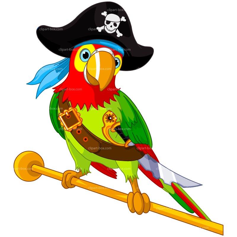 Parrot clipart parrot bird  Or All ART PARROT