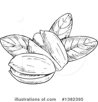 Pistachio clipart Pistachio SM Illustration Clipart SM