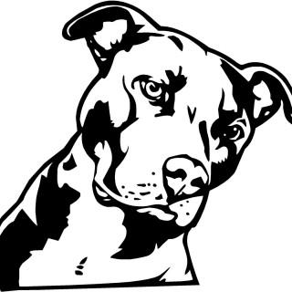 Pit Bull clipart black and white Clip clipart For pitbull Clip