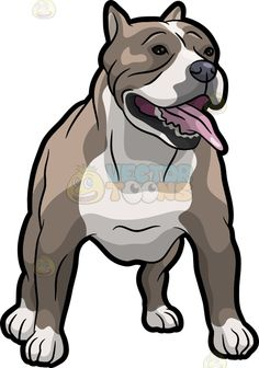 Pit Bull clipart dog tooth Brown on Bull : dog