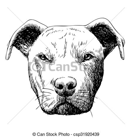 Pitbull clipart sketch  dog illustration pitbull doodle