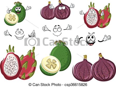 Pitaya clipart animation Feijoa exotic of  and