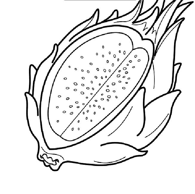 Pitaya clipart dragonfly Page Pinterest dragon coloring fruit