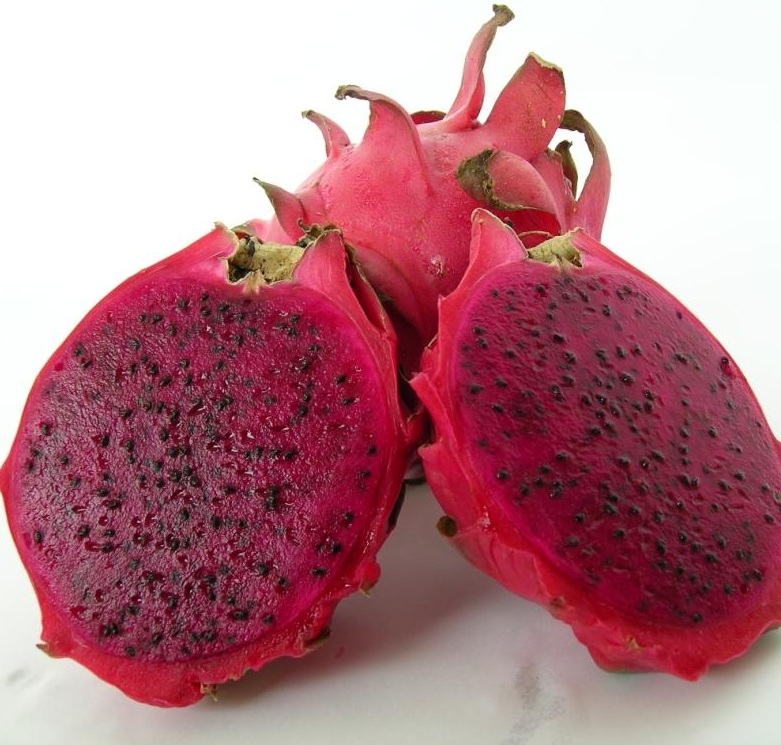Pitaya clipart health Pinterest Herbs and Fruits roja