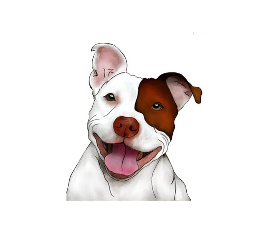 Pitbull clipart pittbull Pitbull Art Smiling Pitbull Happy
