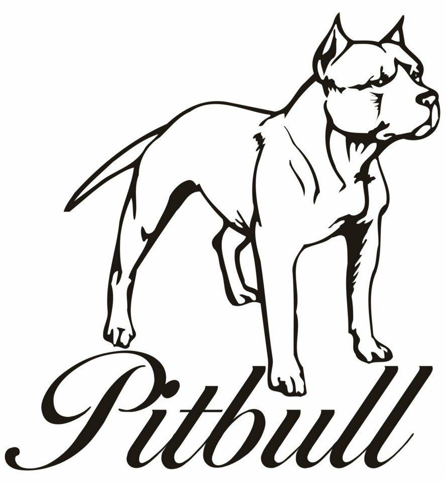 Pitbull clipart draw a Puppy Pitbull #17 Pitbull Download