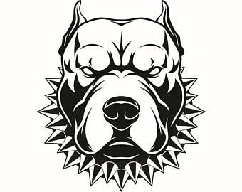Pitbull clipart mean Clipart Bull American Dog Collar