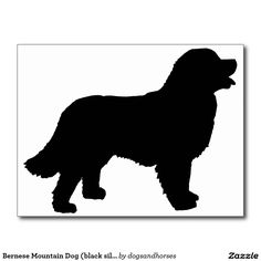 Bernese Mountain Dog clipart newfoundland Bernese Pit Dog Dog