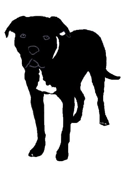 Pitbull clipart silhouette Silhouette Pitbull Silhouette clip bull