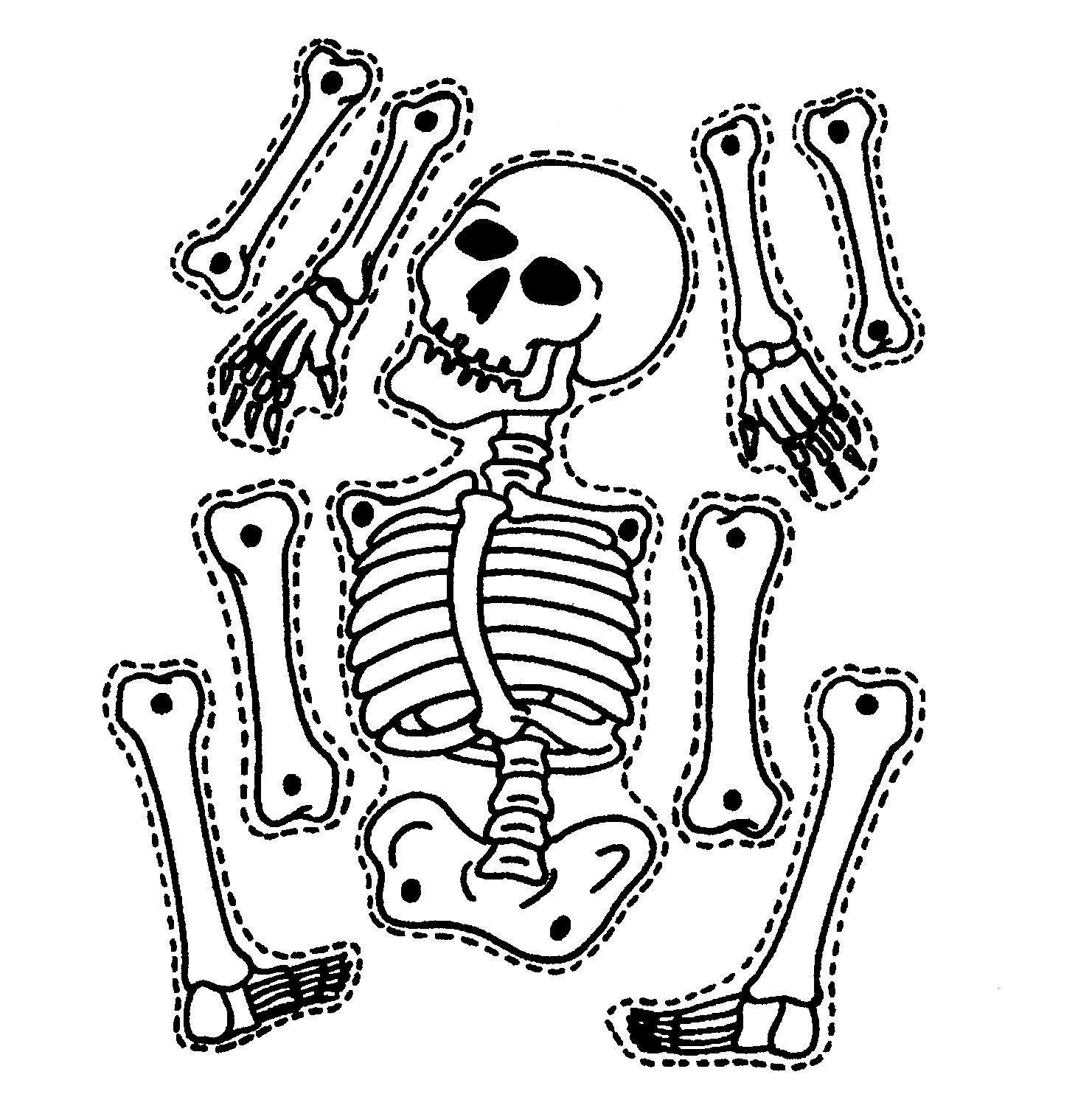 Pixel clipart skeleton head Free Skeletal System Skeleton System
