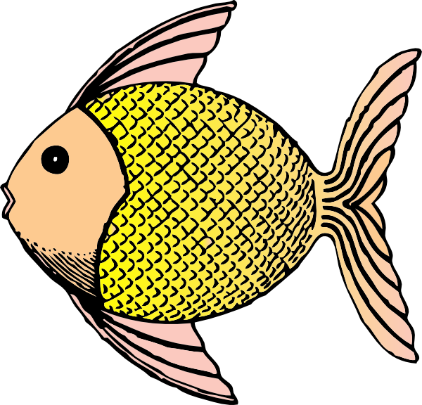 Fins clipart different fish Clipart Chips Clipart Free Clipart