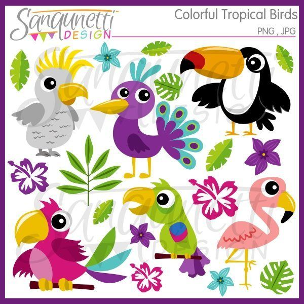 Pl clipart paradise Bird Pinterest The Included a