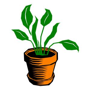 Plant clipart 3 art clipart plant clipart