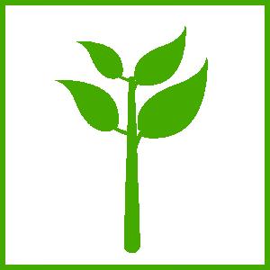 Plant clipart Plant Clip Green Art Download
