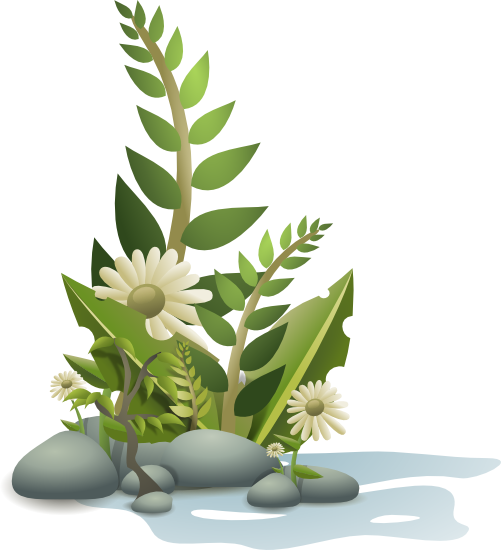 Plant clipart Free Graphics Plants of Plants