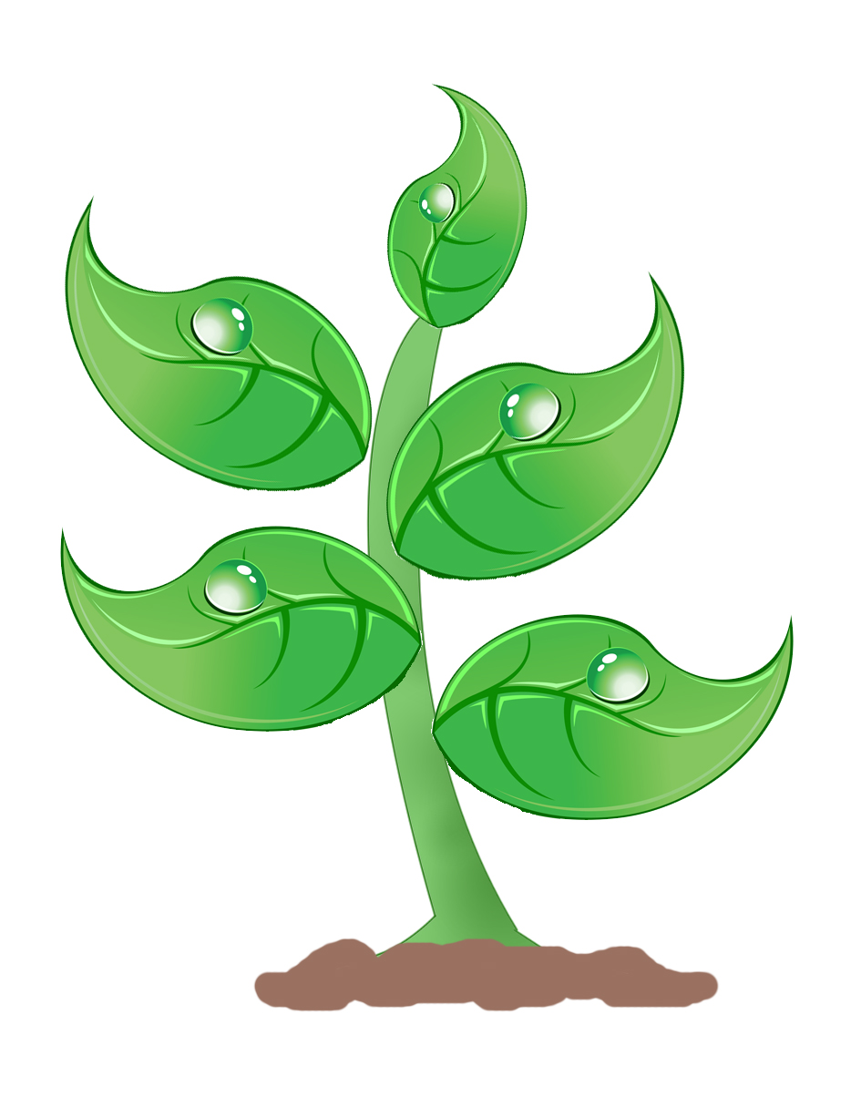 Plant clipart Graphics com free art Cliparting