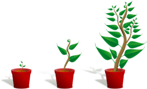 Plant clipart animated Plant com Clip Growth at