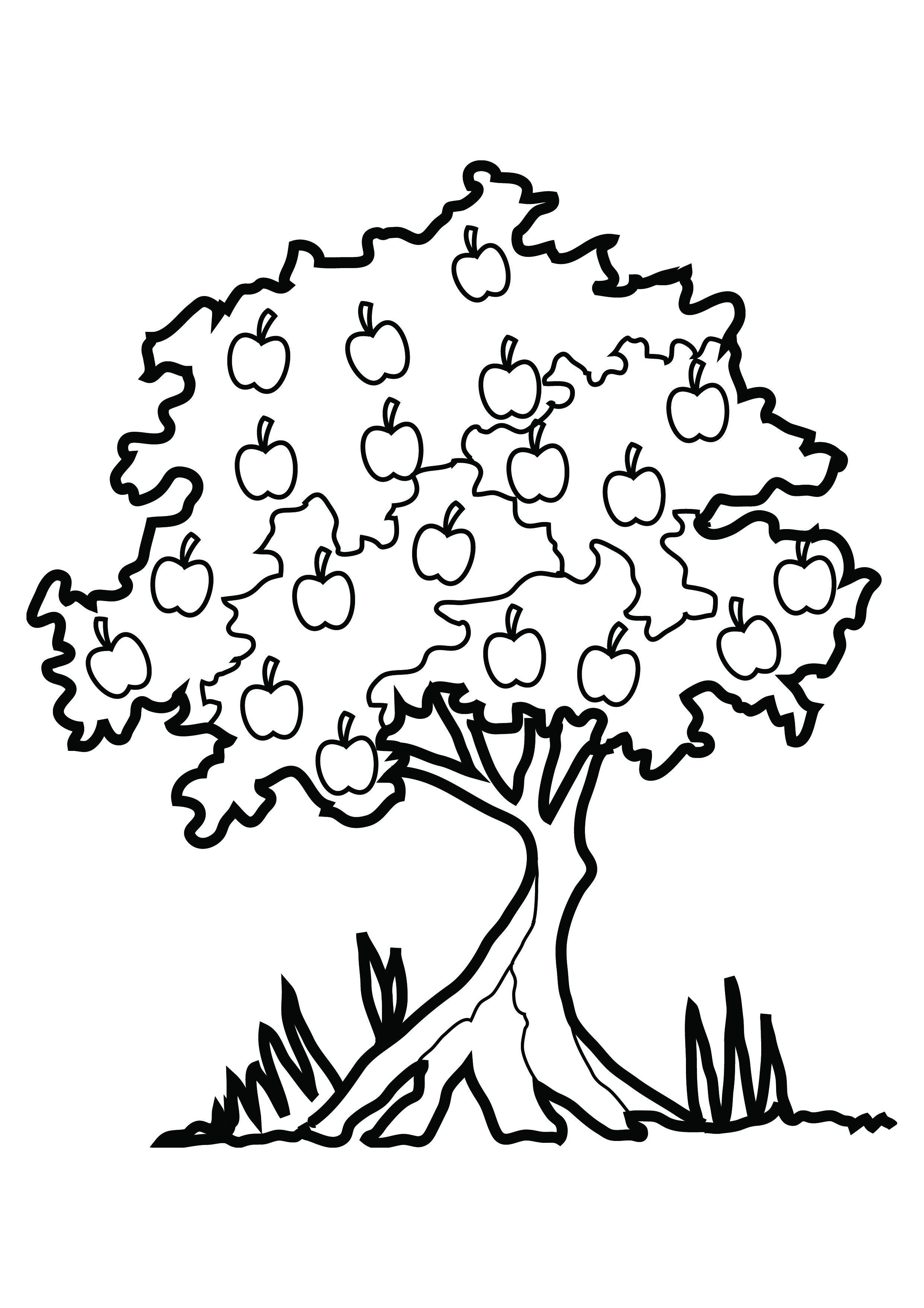 Plant clipart colouring Pages Tree Free For Coloring