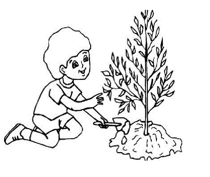 Plant clipart colouring Picture with Coloring 90 Plant