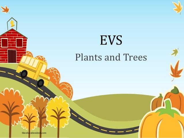 Plant clipart different kind plant And (EVS) Trees Plants com