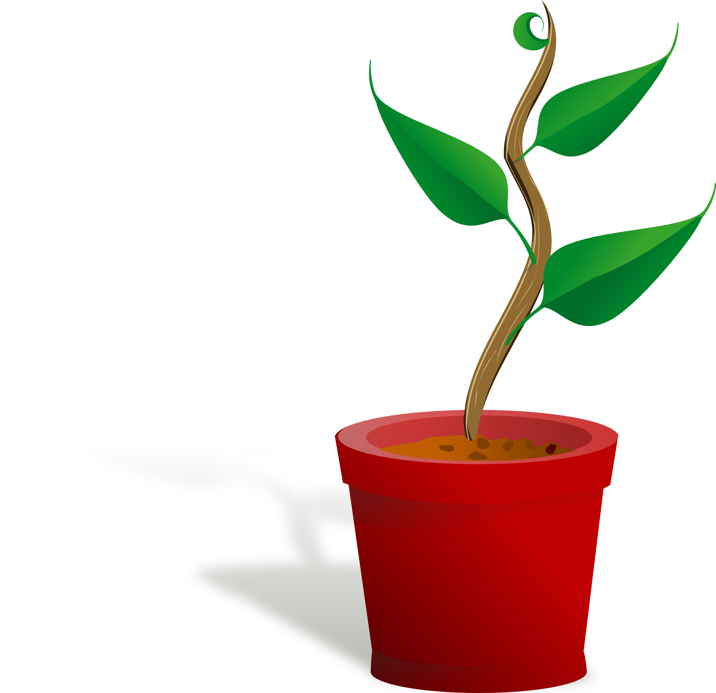 Plant clipart growing stage Growing Stages Free growing%20plant%20stages Plant