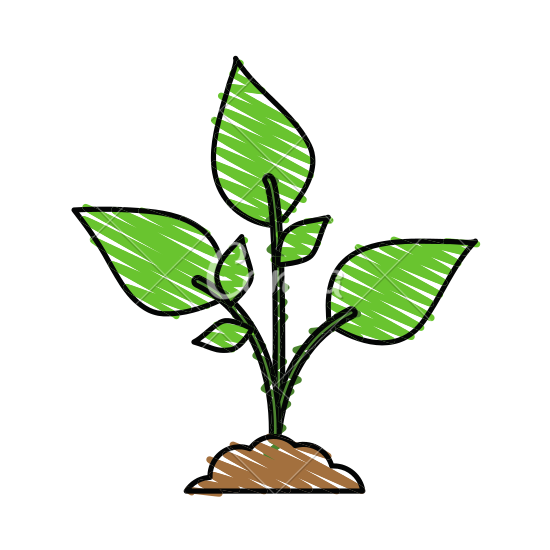 Plant clipart growth With Leaves Plant Plant Growth