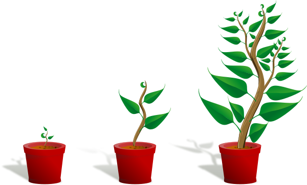 Plant clipart little plant Growing Clipart Free growth%20clipart Panda