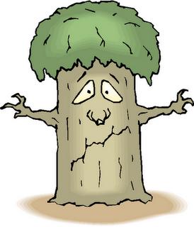 Plant clipart sad Tree jpg clipart free Clipart