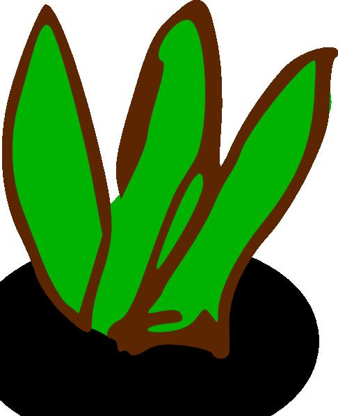 Plant clipart sea plant 3 Symbols Sea Plant Clipart