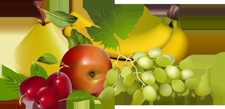 Plate clipart fruit basket #15