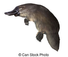 Platypus clipart blue Royalty and platypus Clipartby