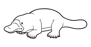 Platypus clipart black and white White black Platypus and clipart