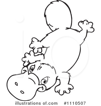 Platypus clipart black and white Panda Clipart Clipart Platypus Images
