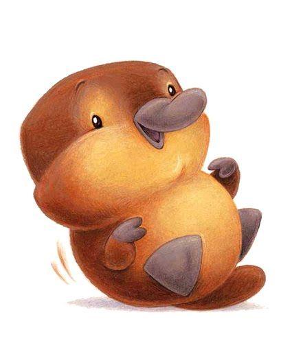 Platypus clipart foot Best Baby Pinterest Platypus! images