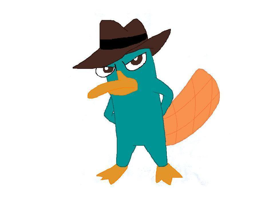 Platypus clipart foot They Platypus Free Perry but