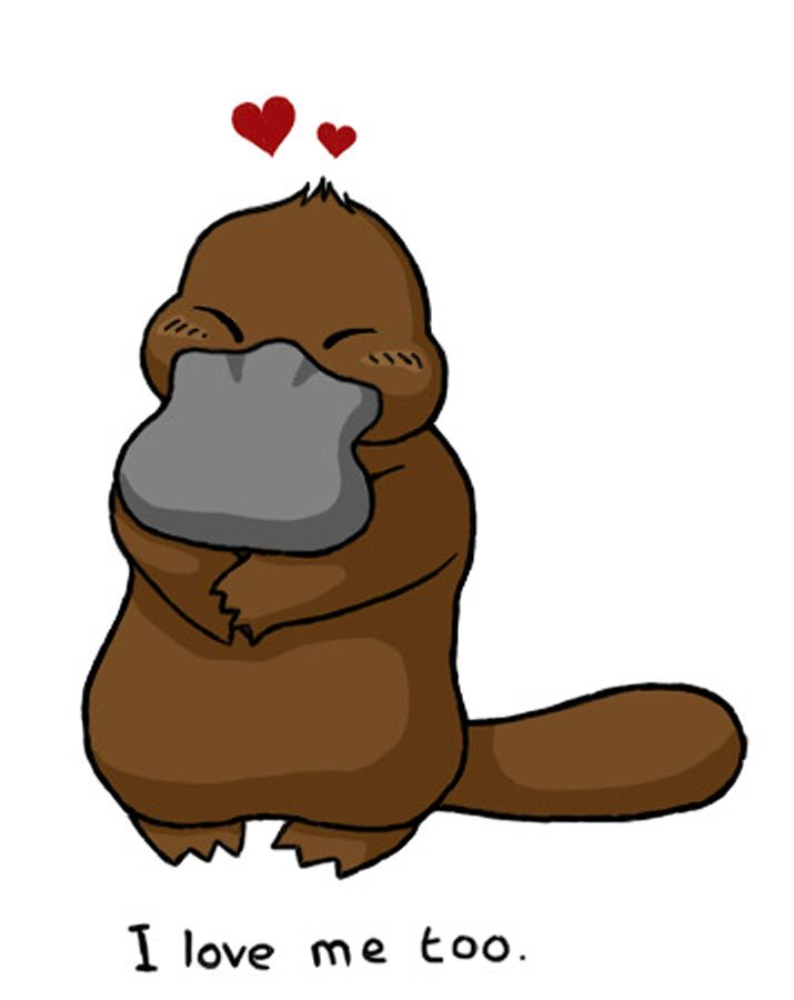 Platypus clipart foot By Love images on the
