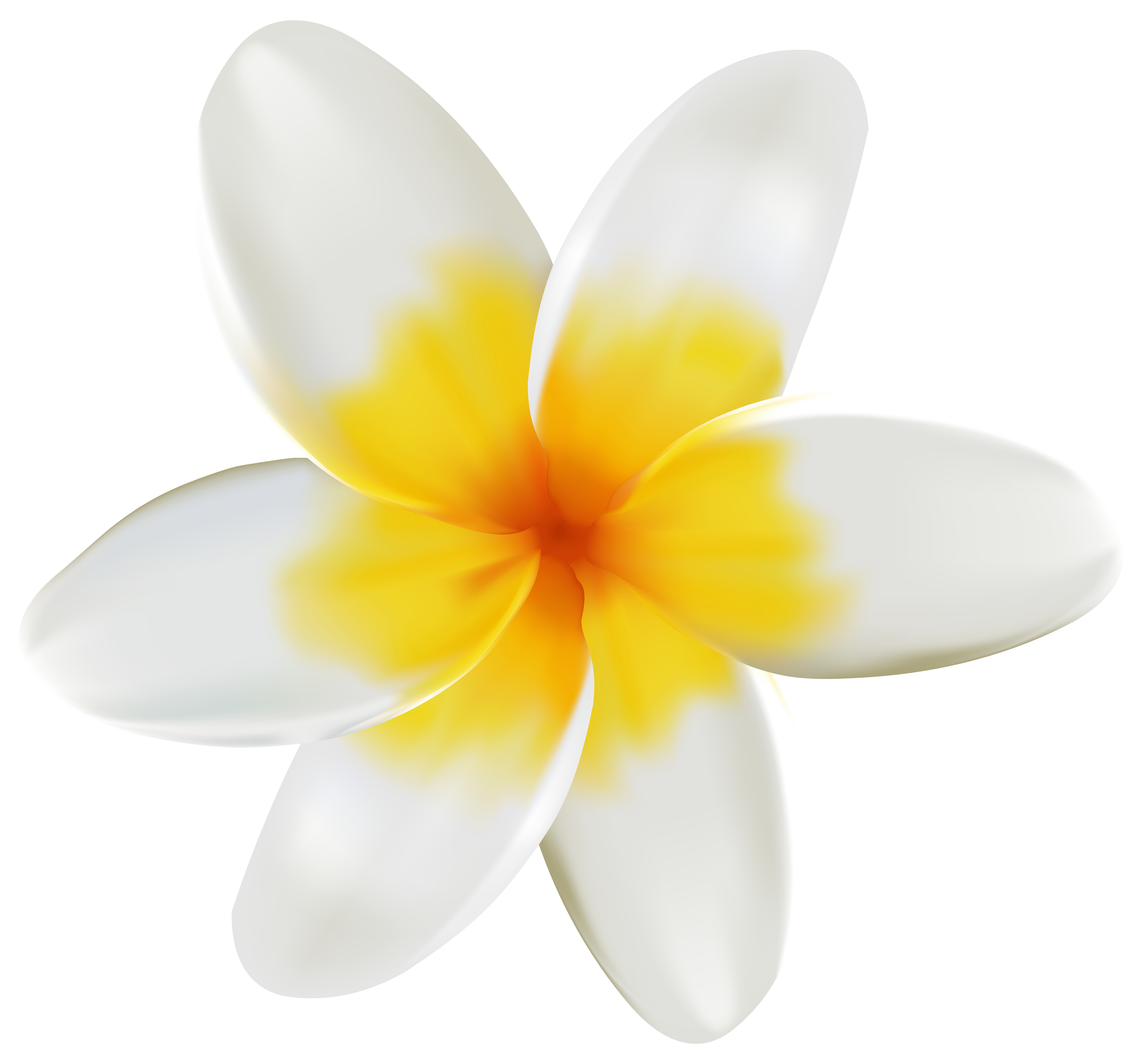 Yellow clipart plumeria PNG Plumeria Quality full Clipart