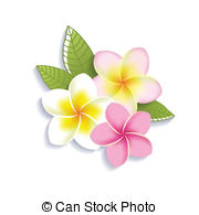 Plumeria clipart Vector art  flowers Vector