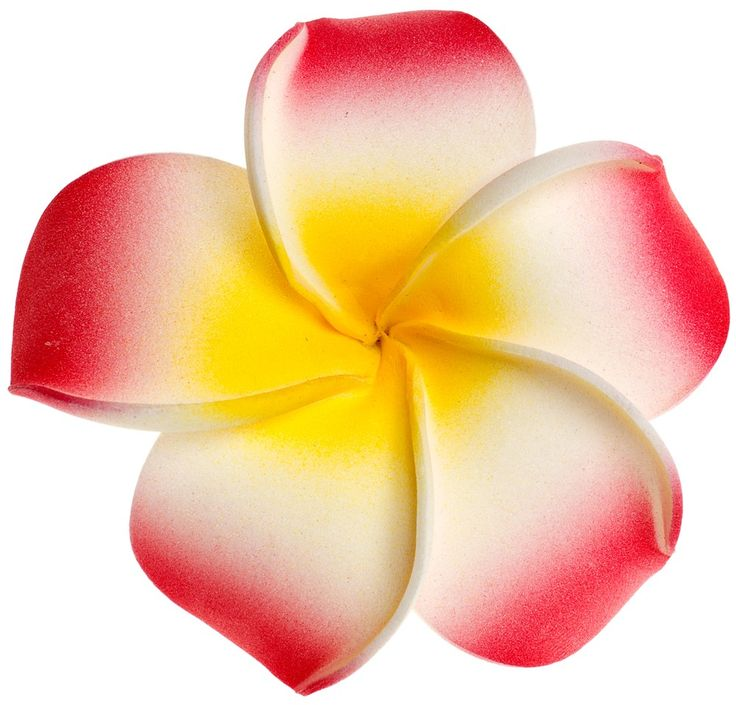 Yellow clipart plumeria Best ClipArt Pinterest Flower 162