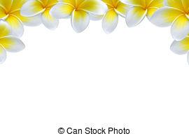 Plumeria clipart sand castle Background Photo flower plumeria White