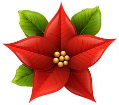 Poinsettia clipart Christmas Poinsettia Poinsettia  Flower