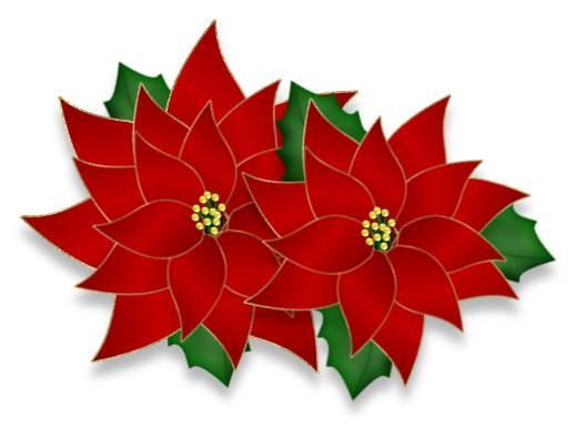 Poinsettia clipart Your poinsettia  Christmas PSP
