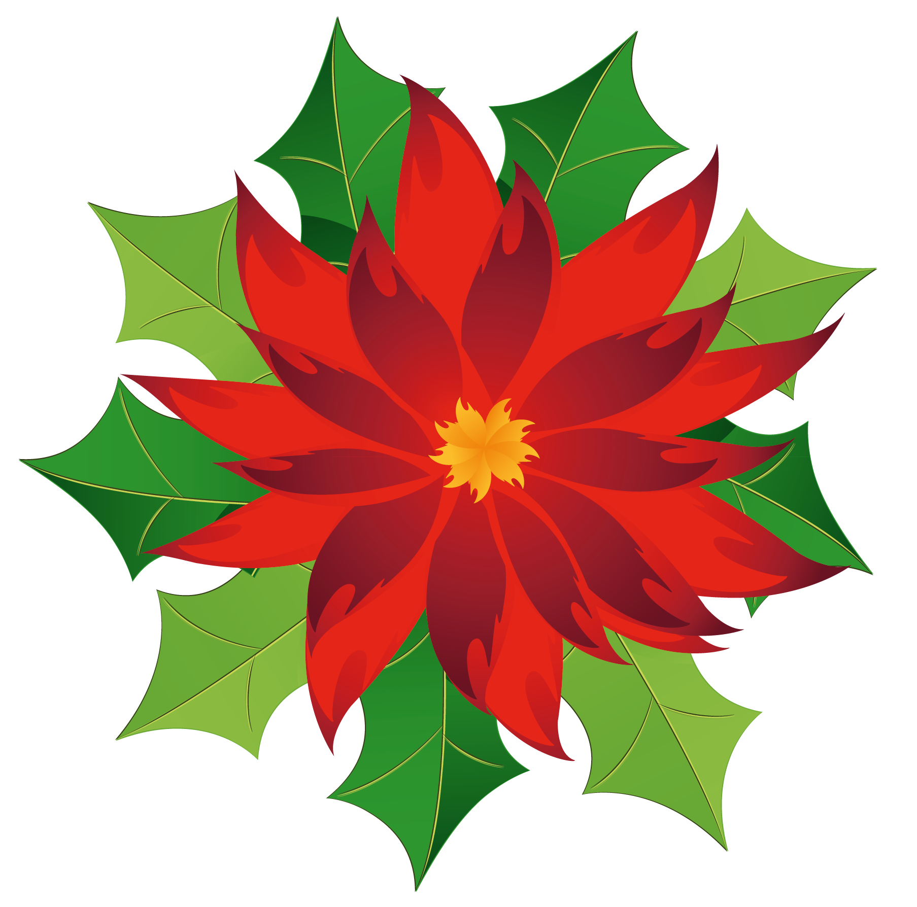 Poinsettia clipart Full View Christmas Yopriceville Gallery