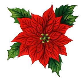 Poinsettia clipart beautiful christmas Clip images and more Pretty